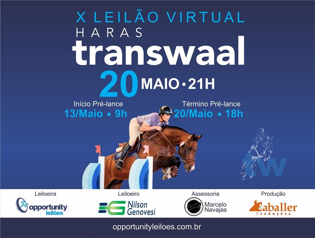X LEILÃO VIRTUAL HARAS TRANSWAAL
