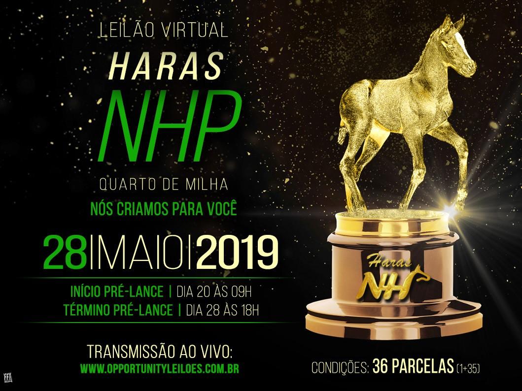 LEILÃO VIRTUAL HARAS NHP - QM