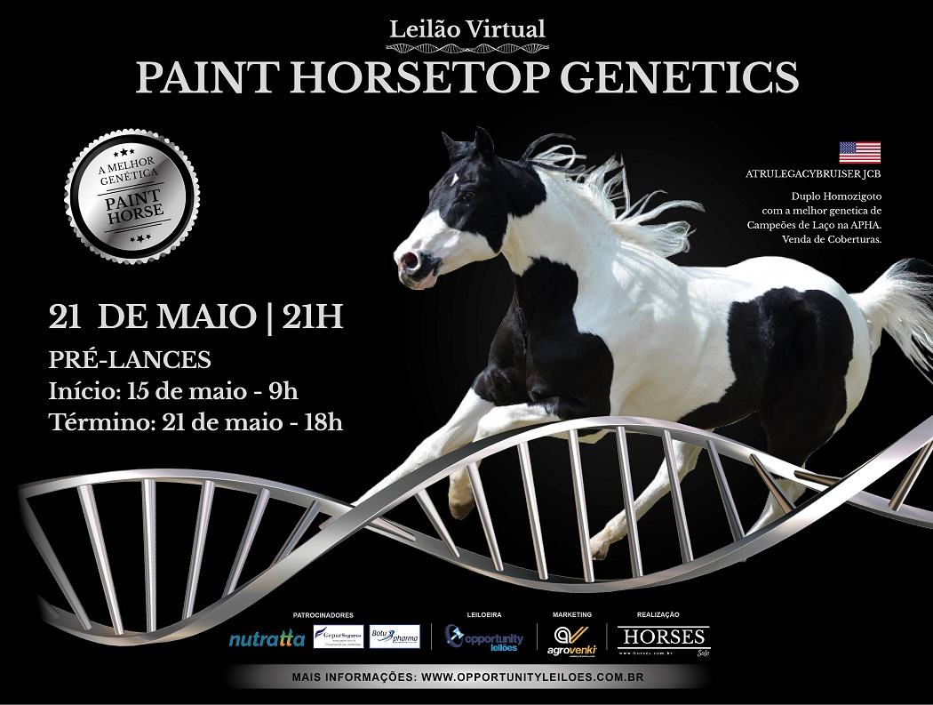 LEILÃO VIRTUAL PAINT HORSE TOP GENETICS