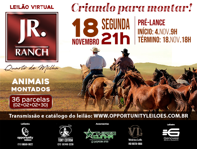 LEILÃO VIRTUAL JR RANCH