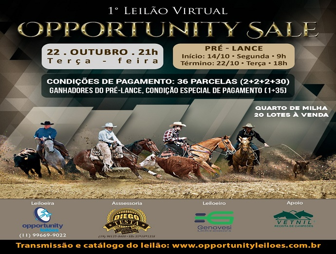 LEILÃO VIRTUAL OPPORTUNITY SALE