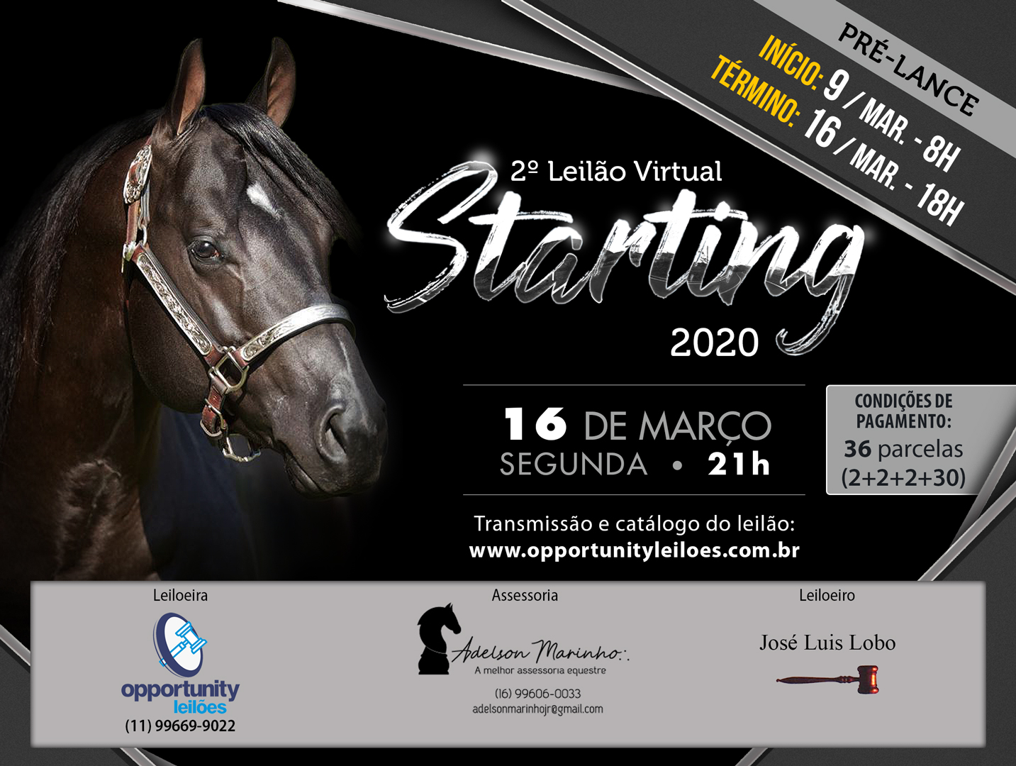 2º LEILÃO VIRTUAL STARTING 2020