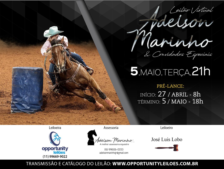 LEILÃO VIRTUAL ADELSON MARINHO & CONVIDADOS ESPECIAIS