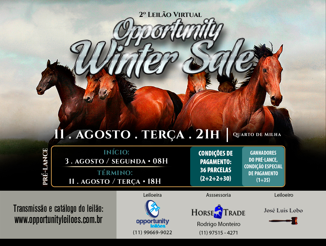 LEILÃO VIRTUAL OPPORTUNITY WINTER SALE
