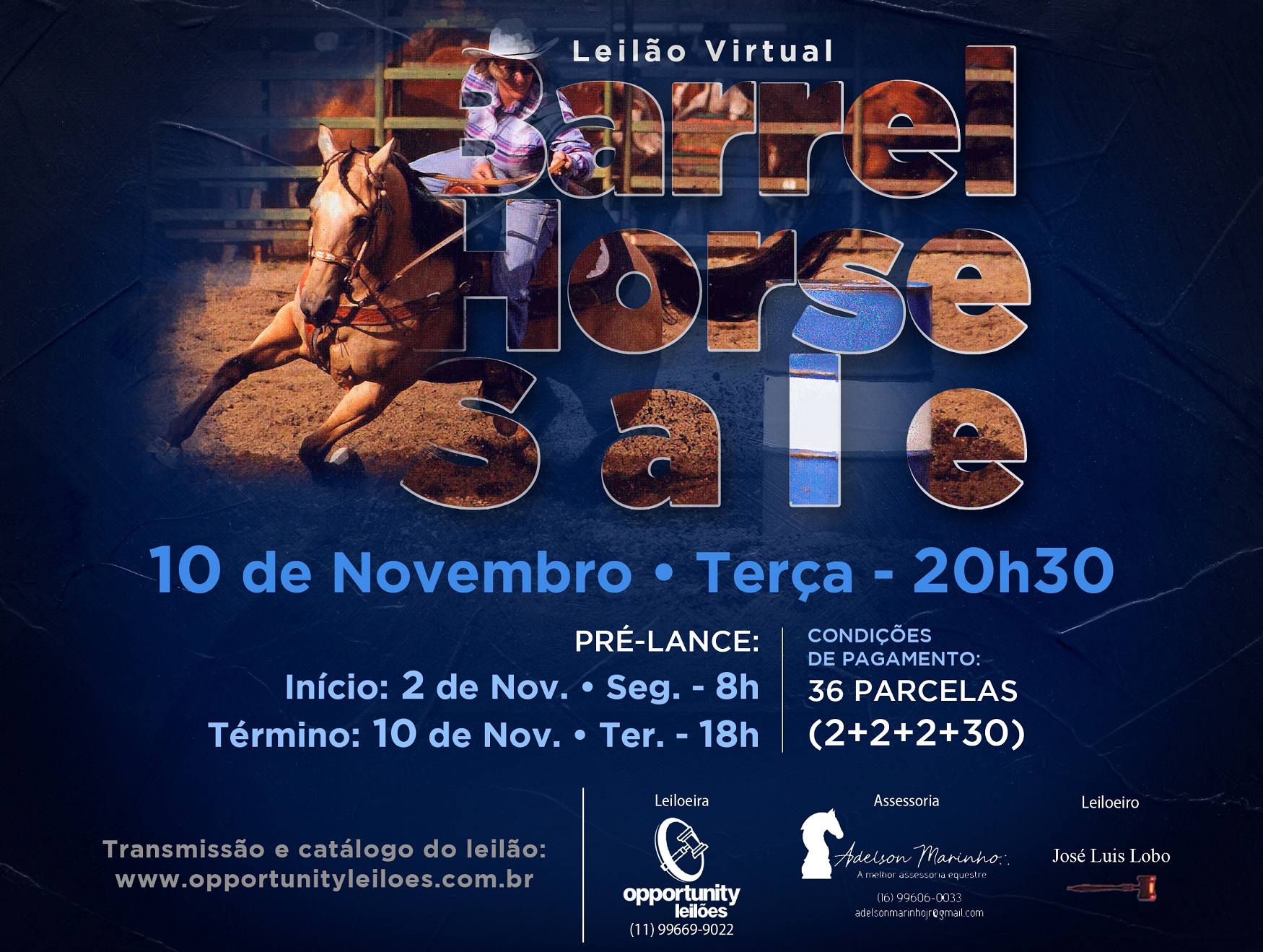 LEILÃO VIRTUAL BARREL HORSE SALE