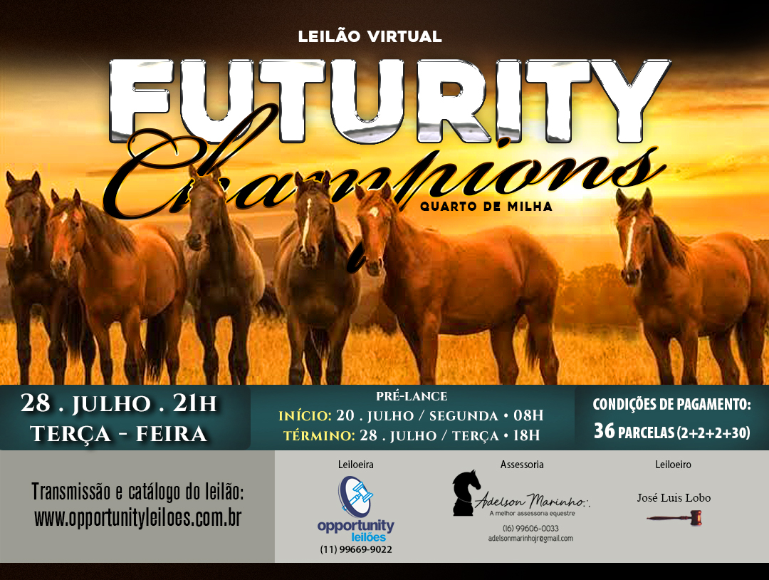 LEILÃO VIRTUAL FUTURITY CHAMPIONS