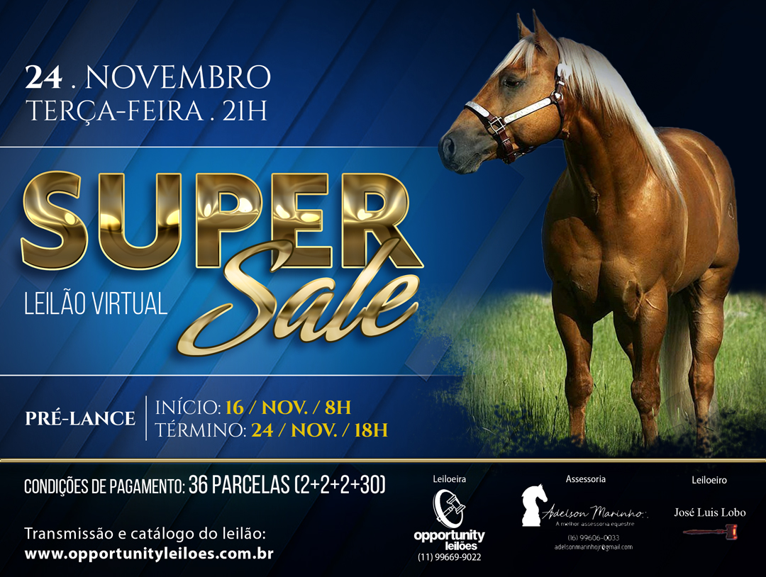 LEILÃO VIRTUAL SUPER SALE
