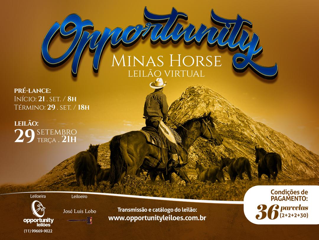 LEILÃO VIRTUAL OPPORTUNITY MINAS HORSE