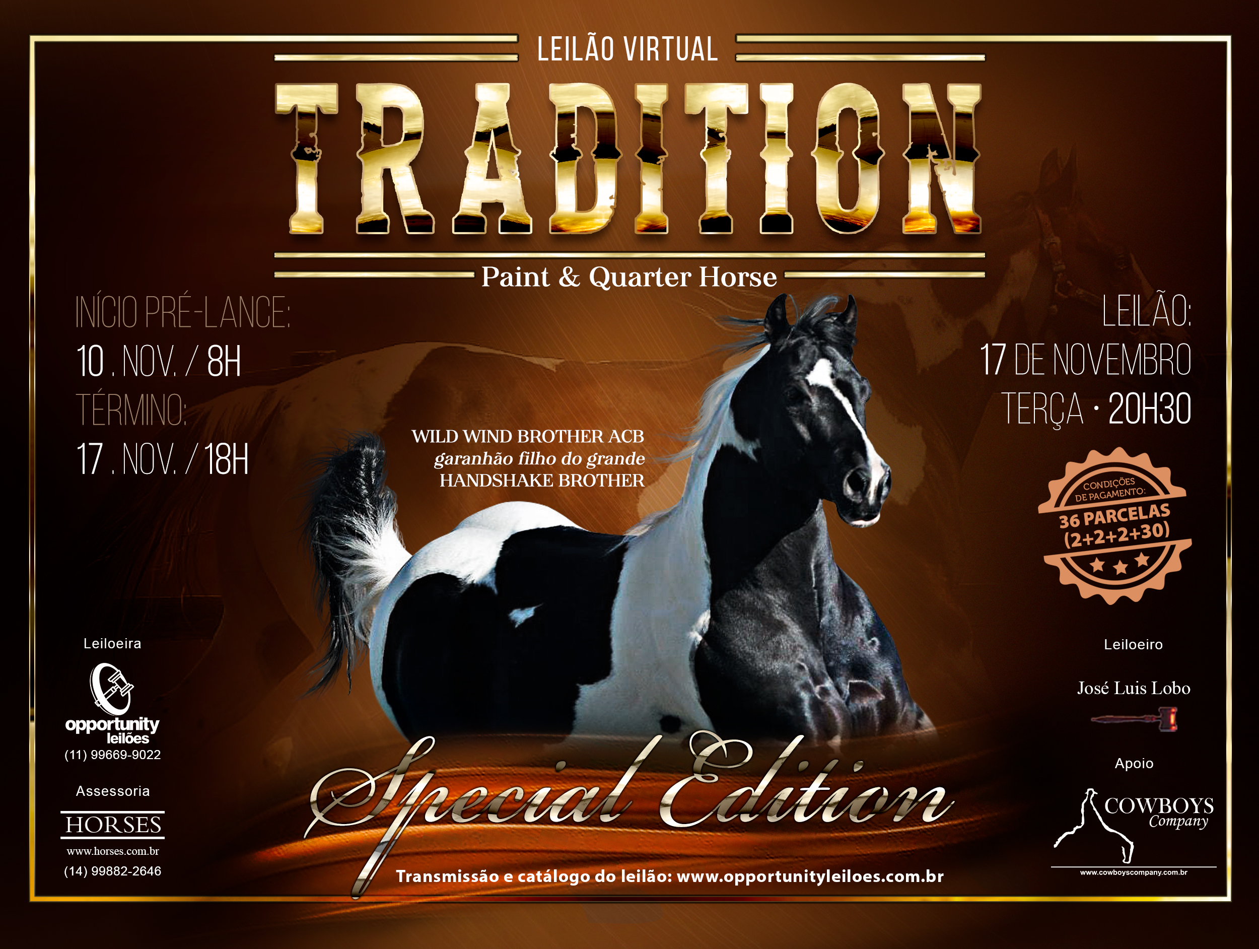 LEILÃO TRADITION - PAINT & QUARTER HORSE - SPECIAL EDITION