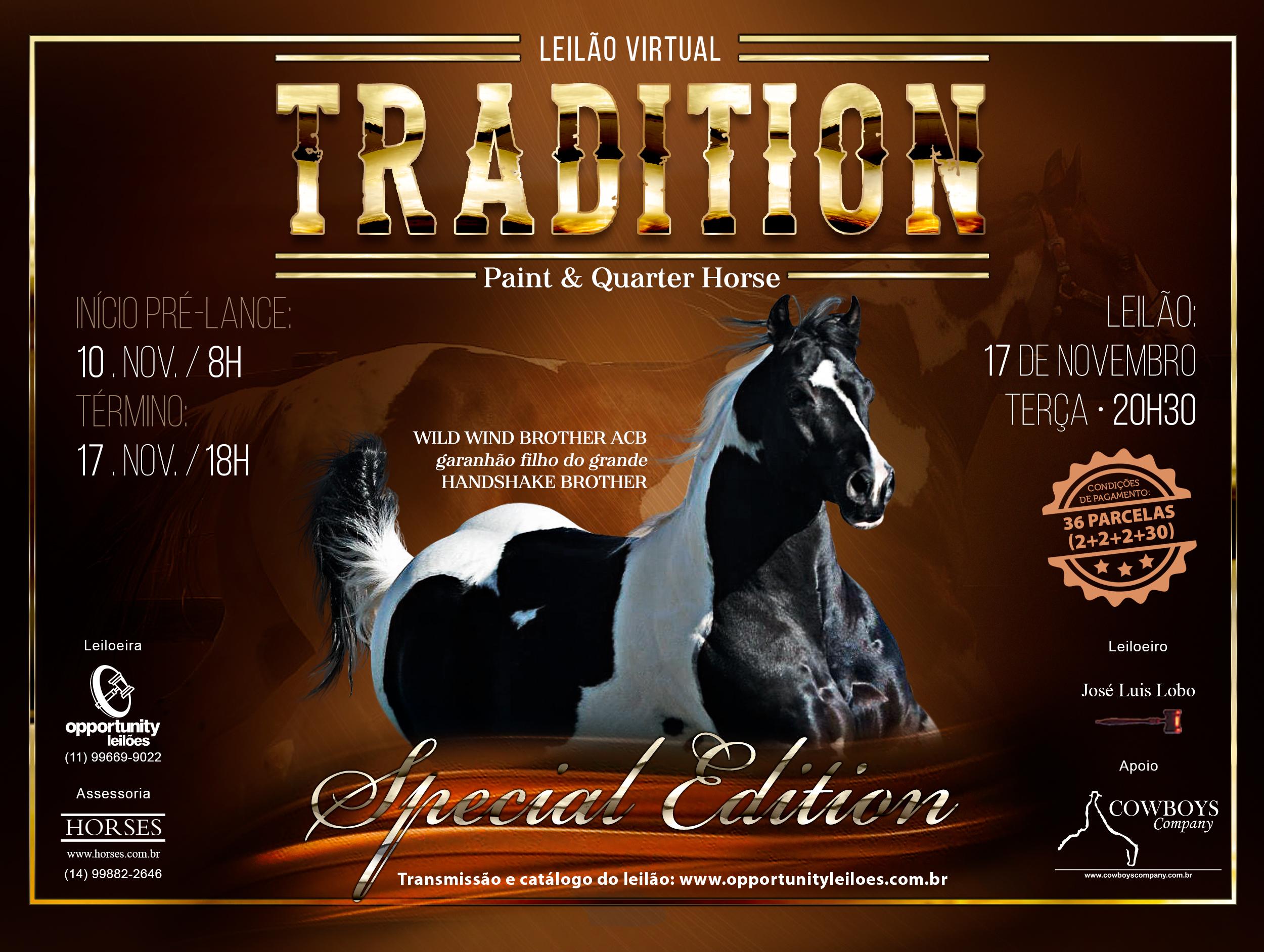 LEILÃO TRADITION - PAINT & QUARTER HORSE