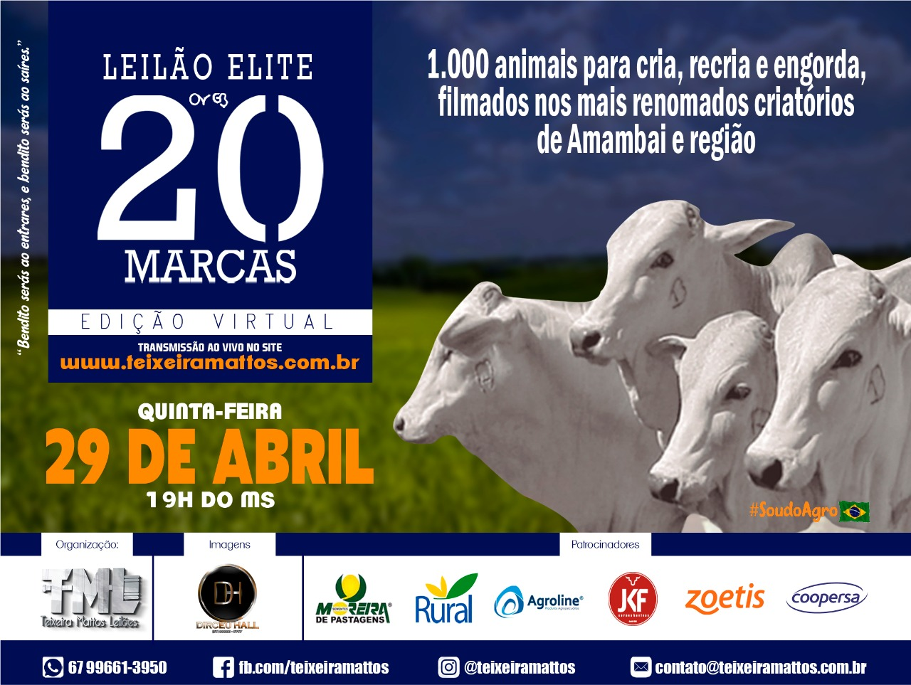 LEILÃO ELITE 20 MARCAS