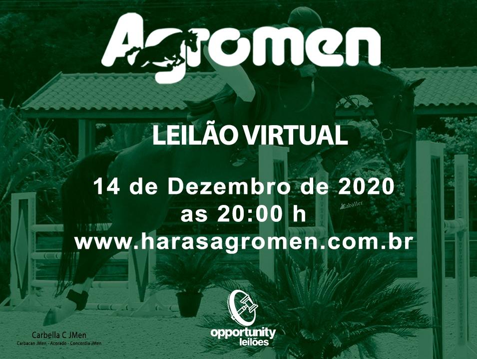 LEILÃO VIRTUAL HARAS AGROMEN