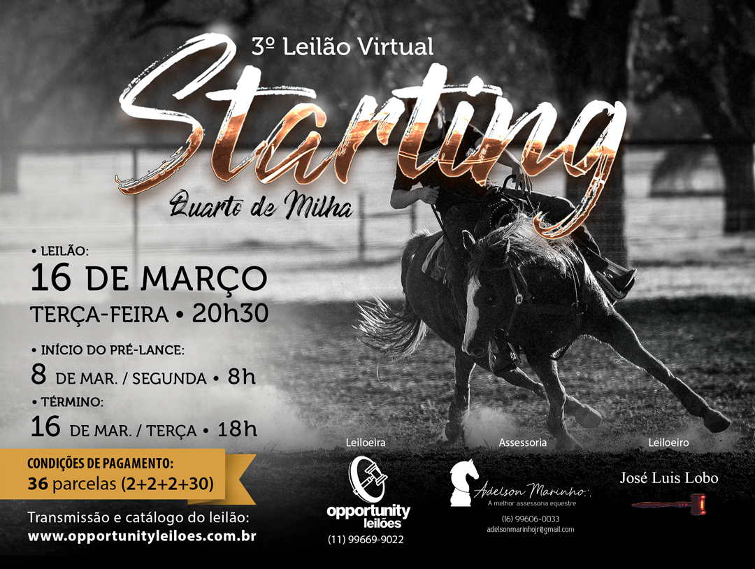 3º LEILÃO VIRTUAL STARTING