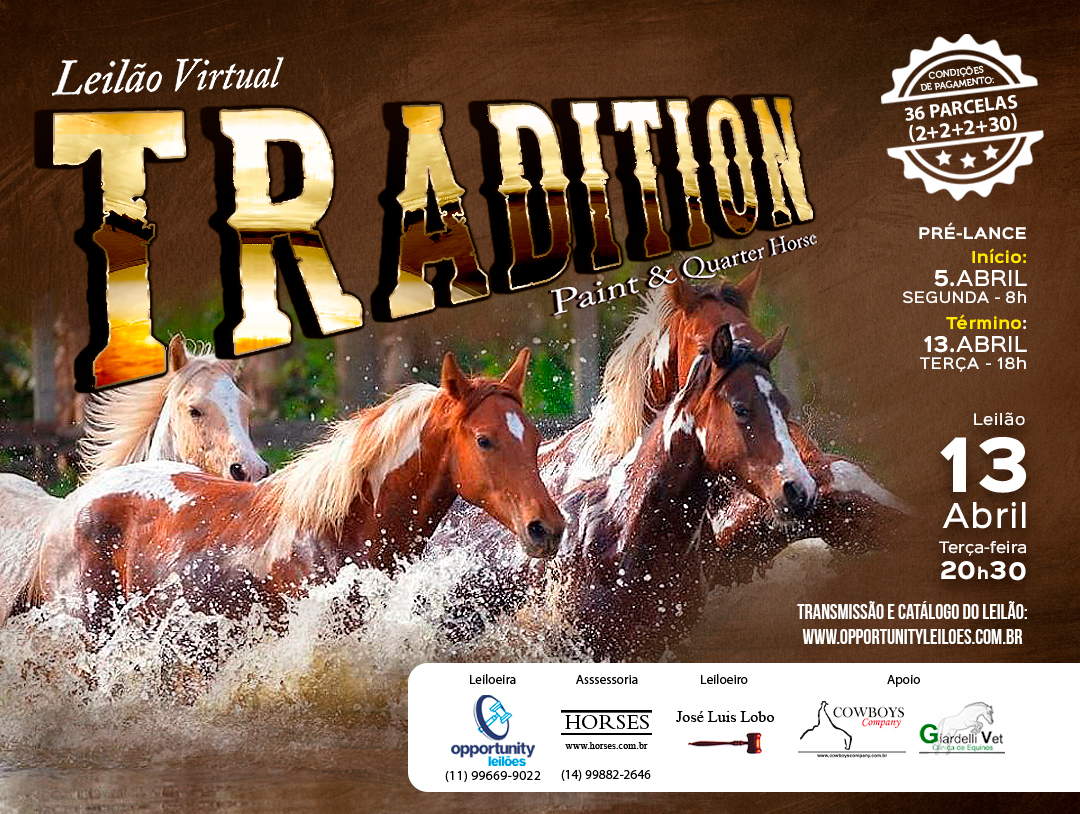LEILÃO VIRTUAL TRADITION - PAINT & QUARTER HORSE