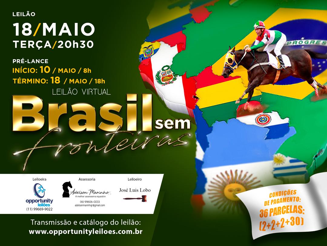 LEILÃO VIRTUAL BRASIL SEM FRONTEIRAS