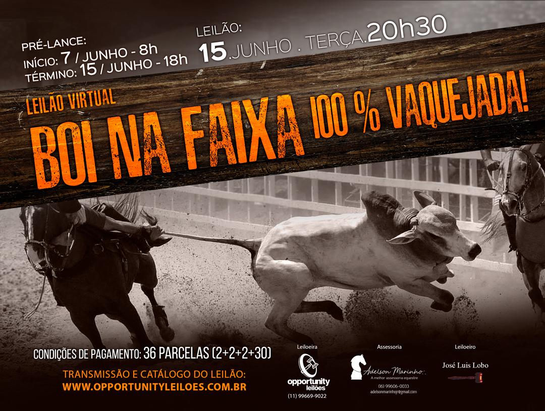 LEILÃO VIRTUAL BOI NA FAIXA - 100% VAQUEJADA