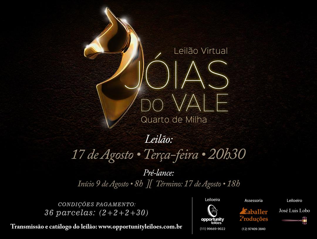 LEILÃO VIRTUAL JÓIAS DO VALE