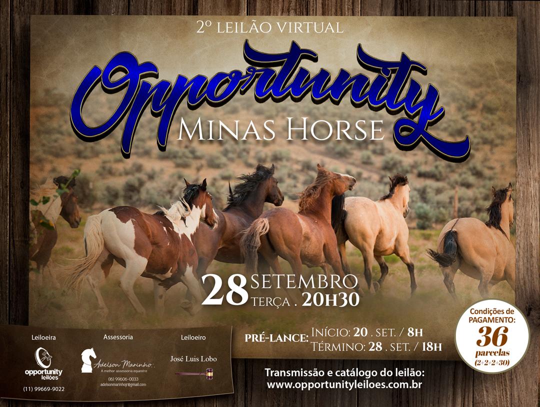 LEILÃO VIRTUAL OPPORTUNITY - MINAS HORSES