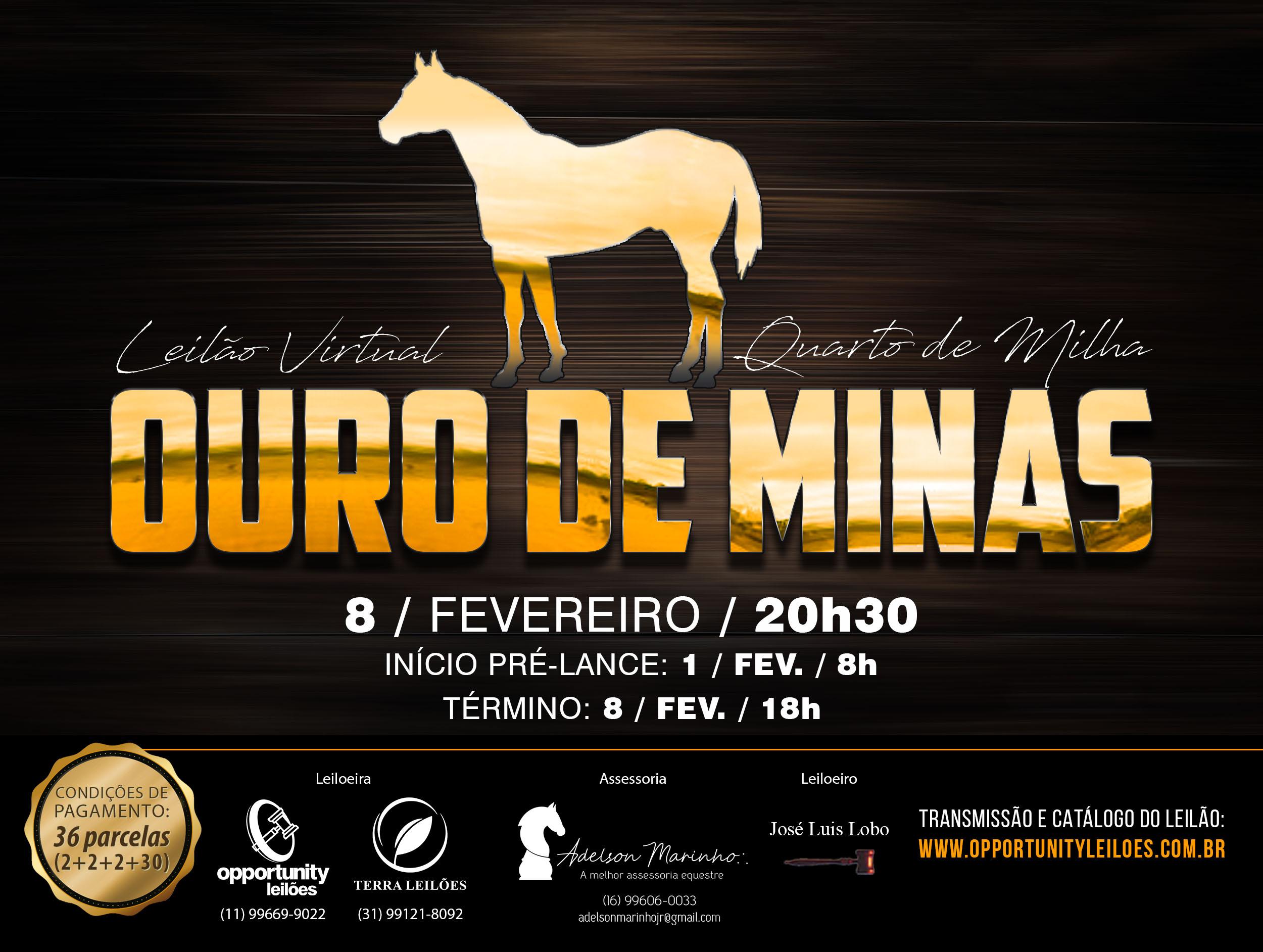 LEILÃO VIRTUAL OURO DE MINAS