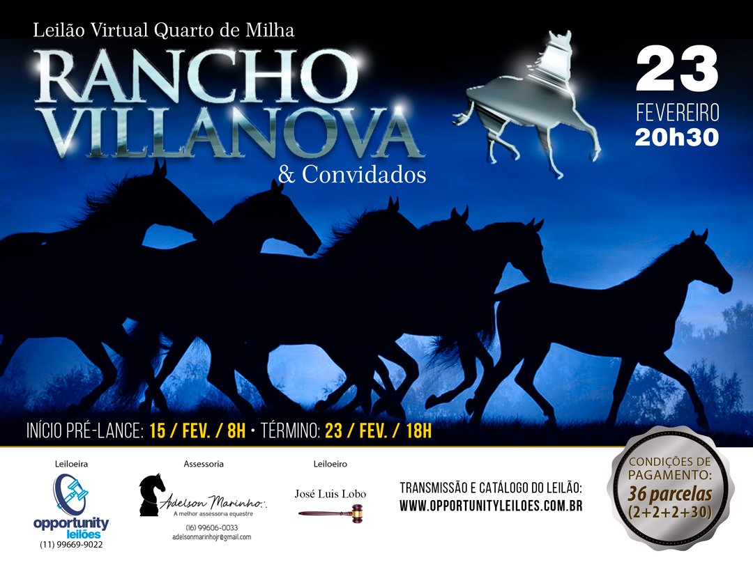 LEILÃO VIRTUAL RANCHO VILLANOVA & CONVIDADOS