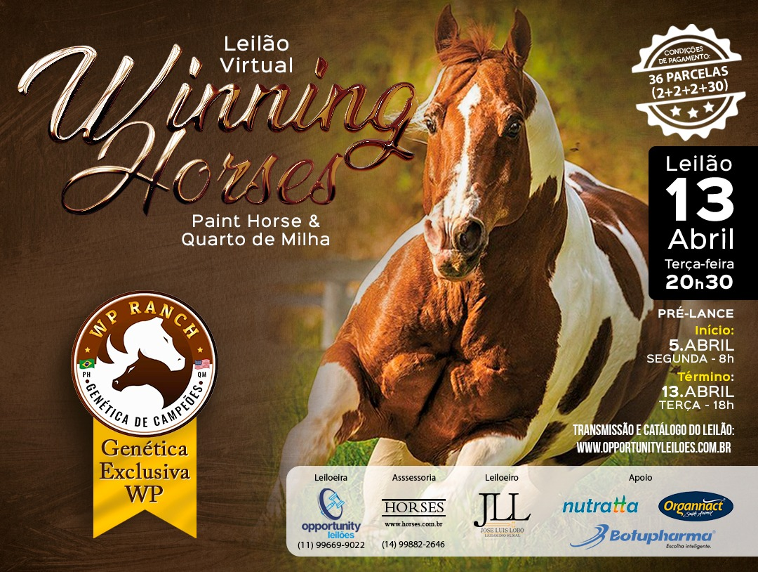 LEILÃO VIRTUAL WINNING HORSES