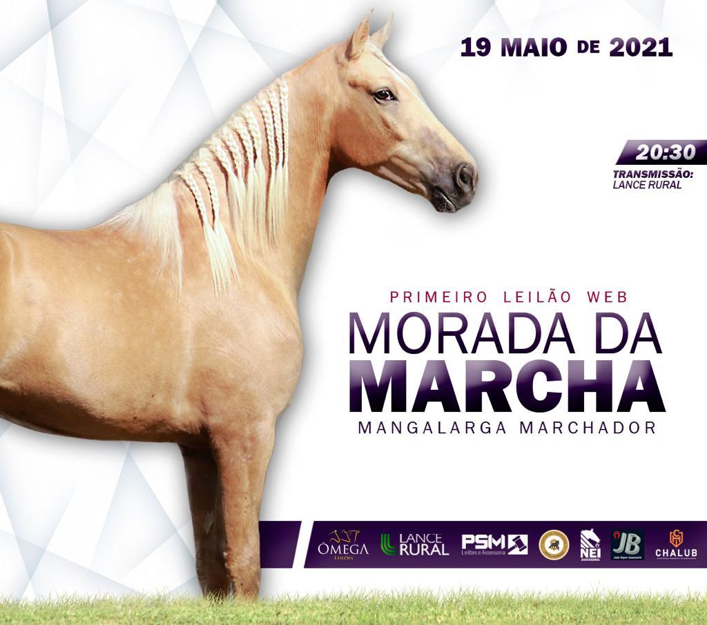 PRIMEIRO LEILÃO WEB MORADA DA MARCHA