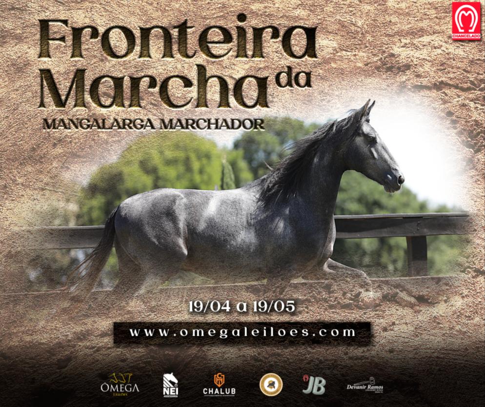 LEILÃO WEB FRONTEIRA DA MARCHA