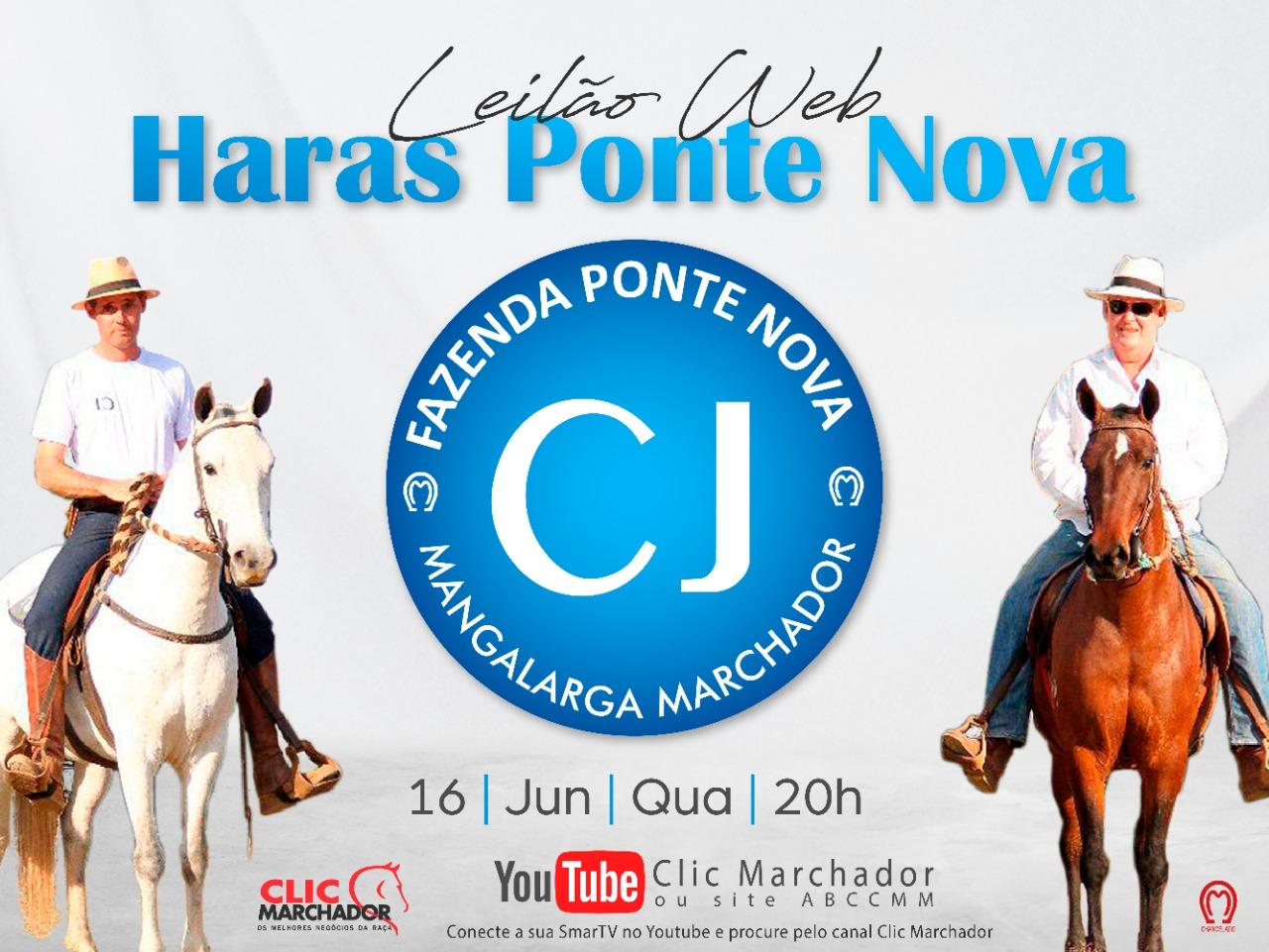 LEILÃO WEB HARAS PONTE NOVA