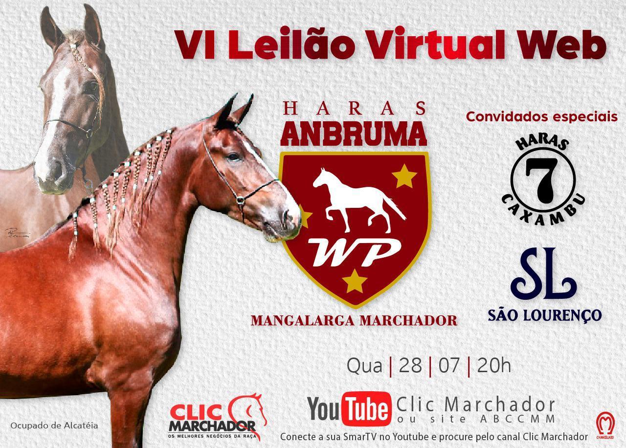 VI LEILÃO VIRTUAL WEB HARAS ANBRUMA