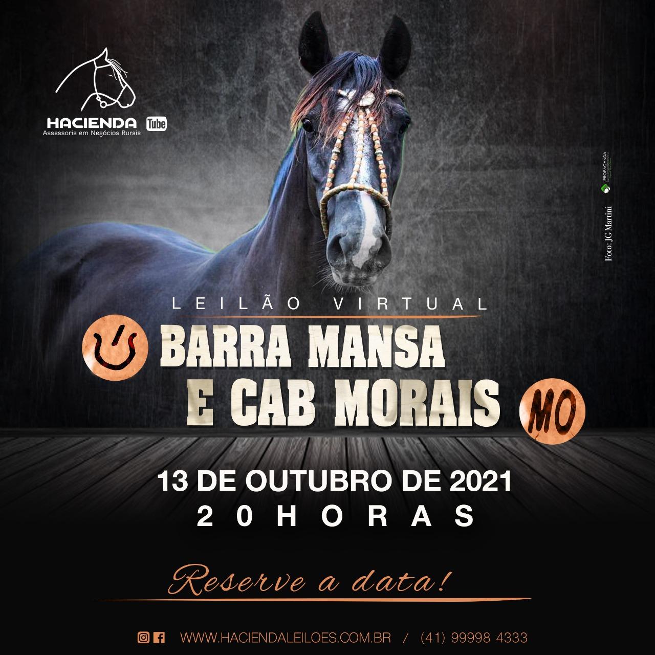 LEILÃO VIRTUAL BARRA MANSA E CABANHA MORAES