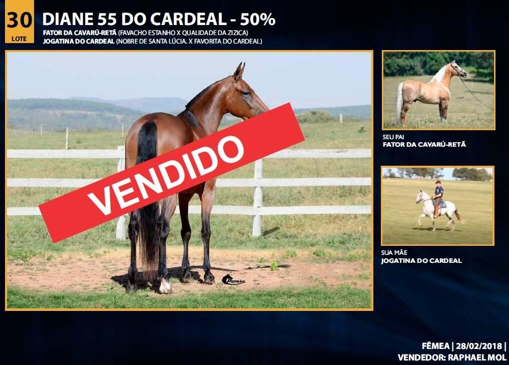 Foto DIANE 55 DO CARDEAL
