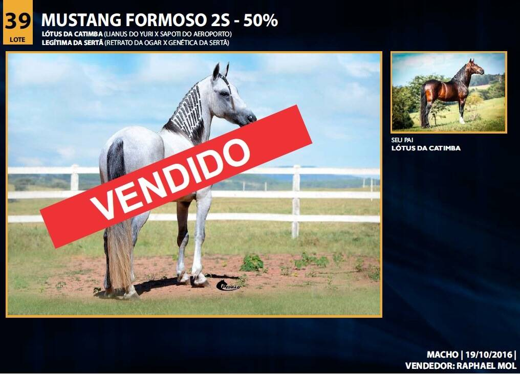 Foto MUSTANG FORMOSO 2S