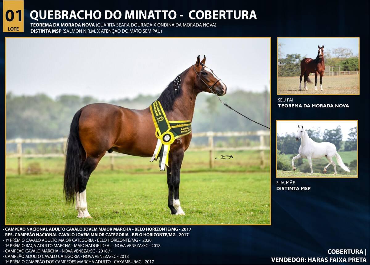 Foto QUEBRACHO DO MINATTO