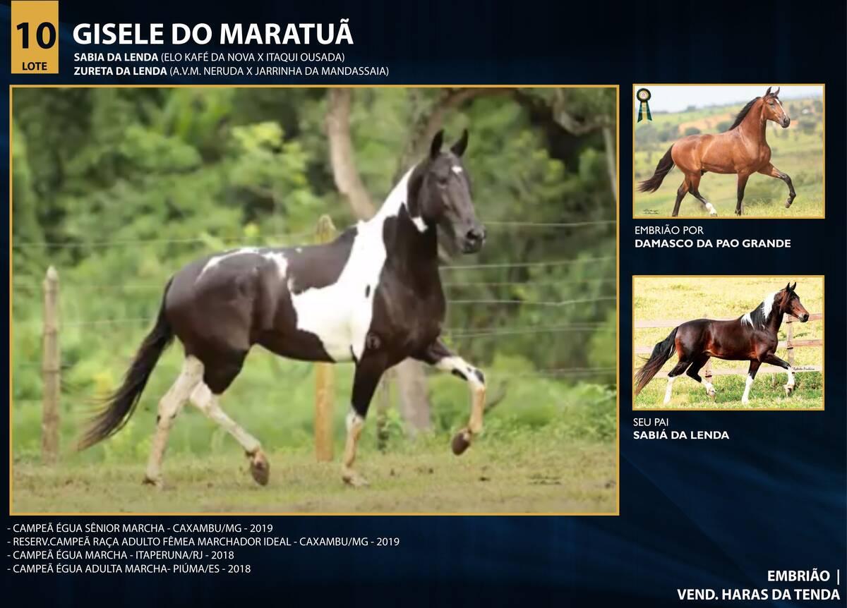 Foto GISELE DO MARATUÃ