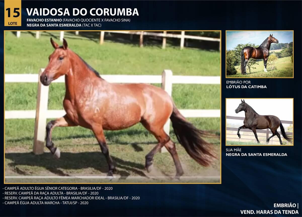 Foto VAIDOSA DO CORUMBÁ