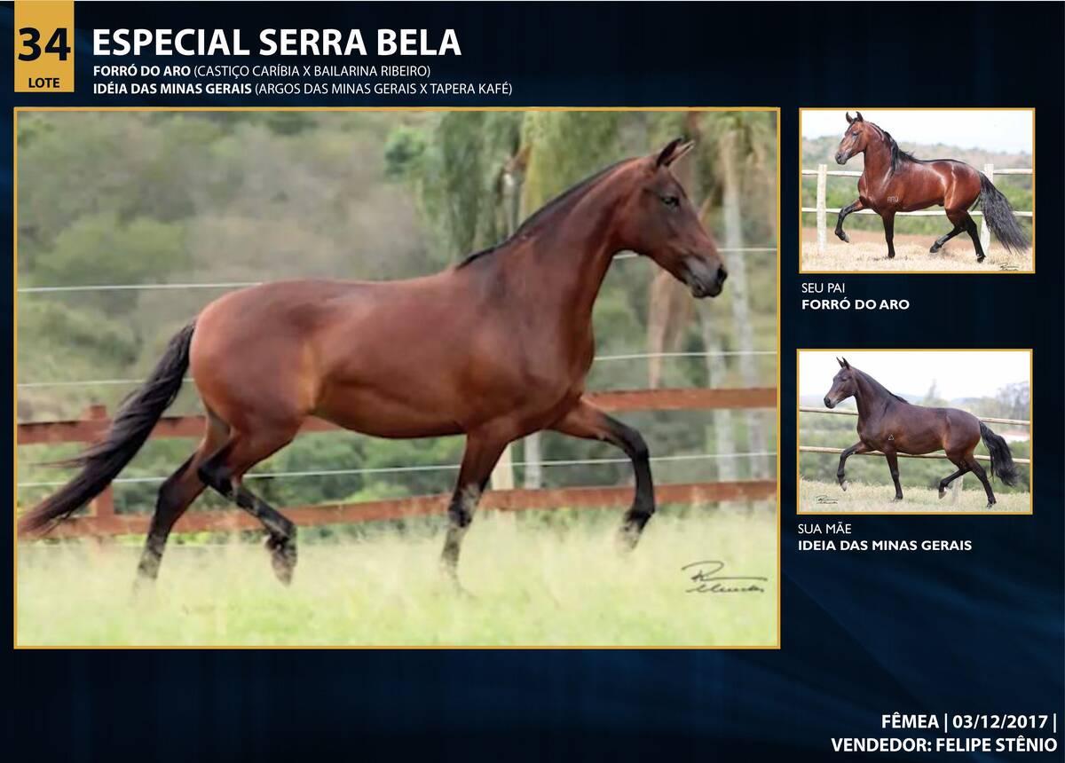 Foto ESPECIAL SERRA BELA