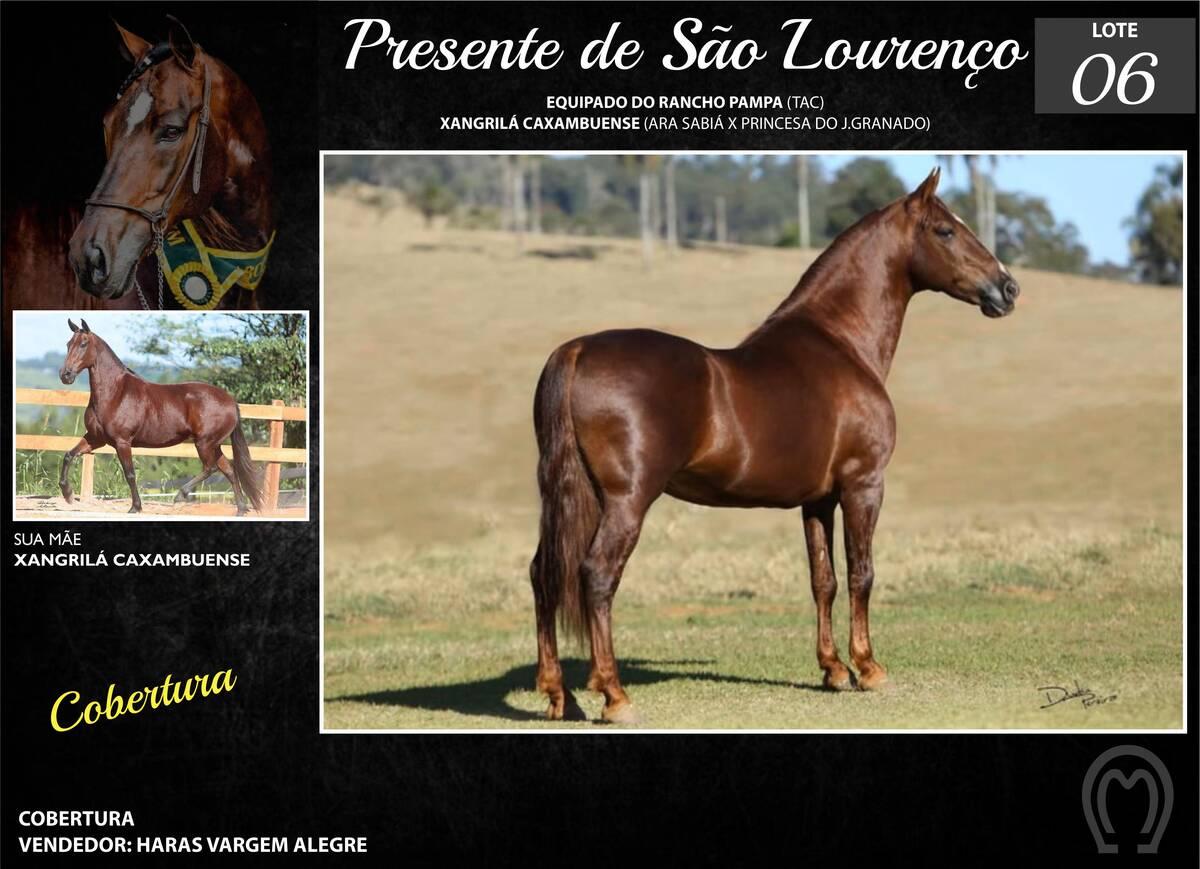 Foto PRESENTE DE SÃO LOURENÇO