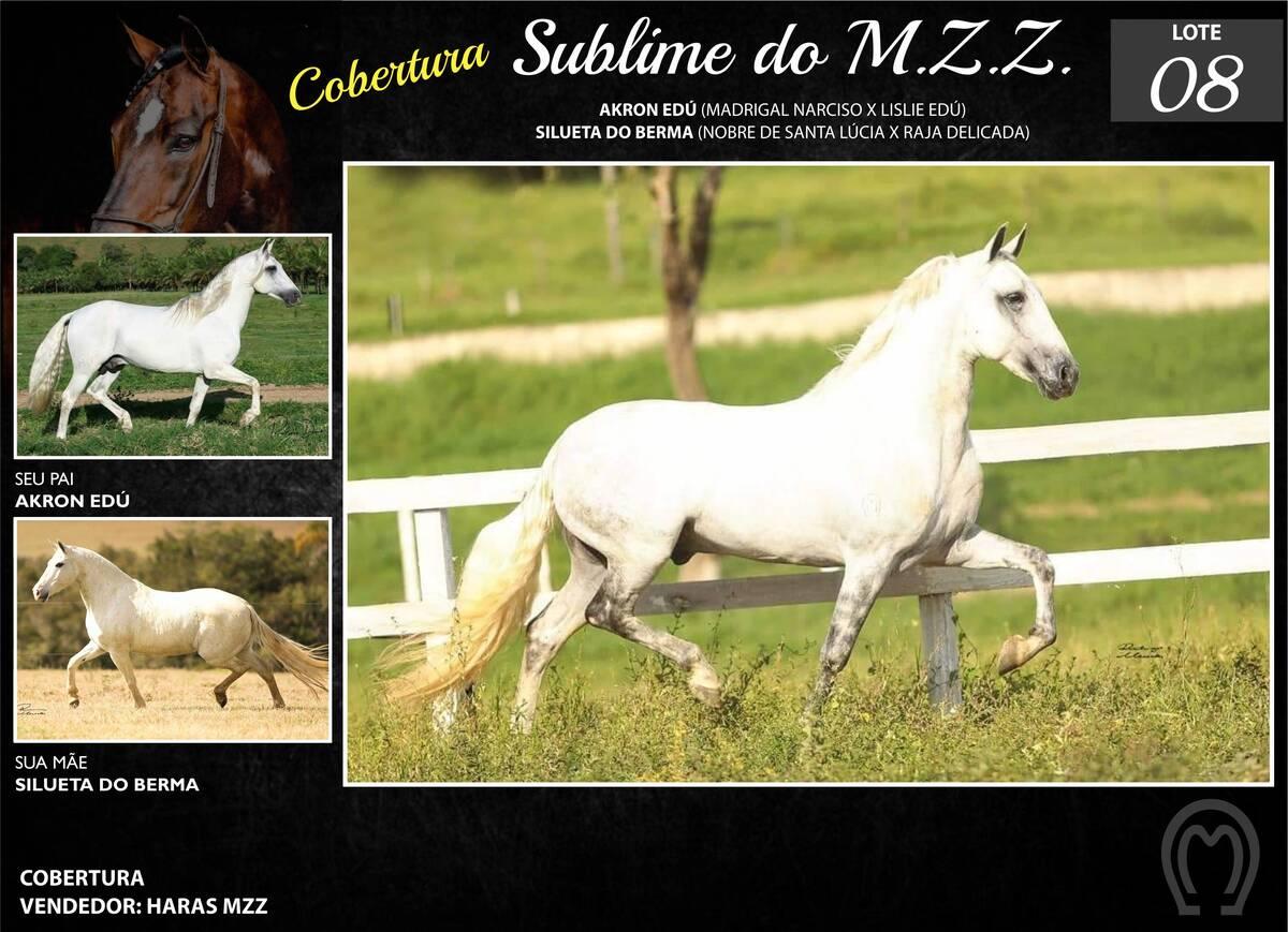 Foto SUBLIME M.Z.Z.