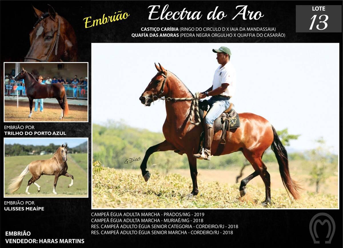 Foto ELECTRA DO ARO