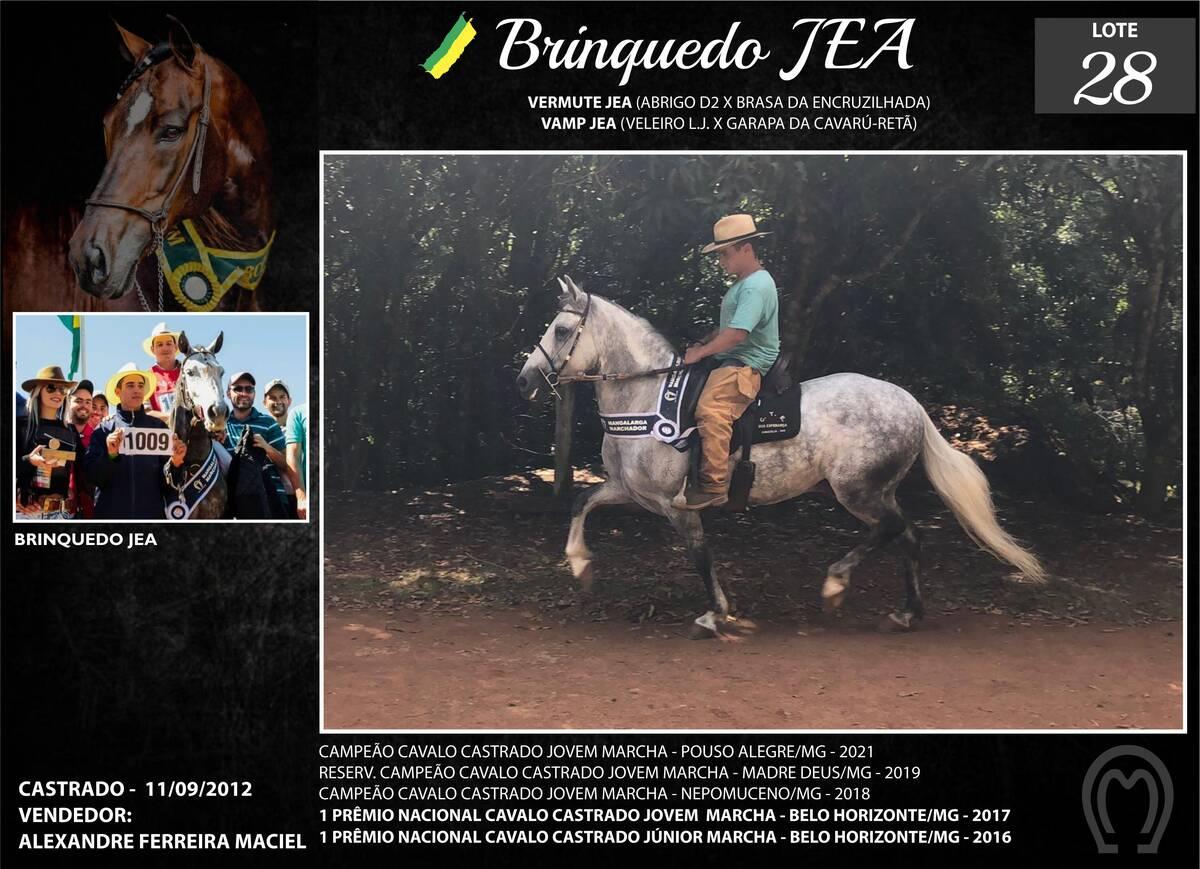 Foto BRINQUEDO JEA