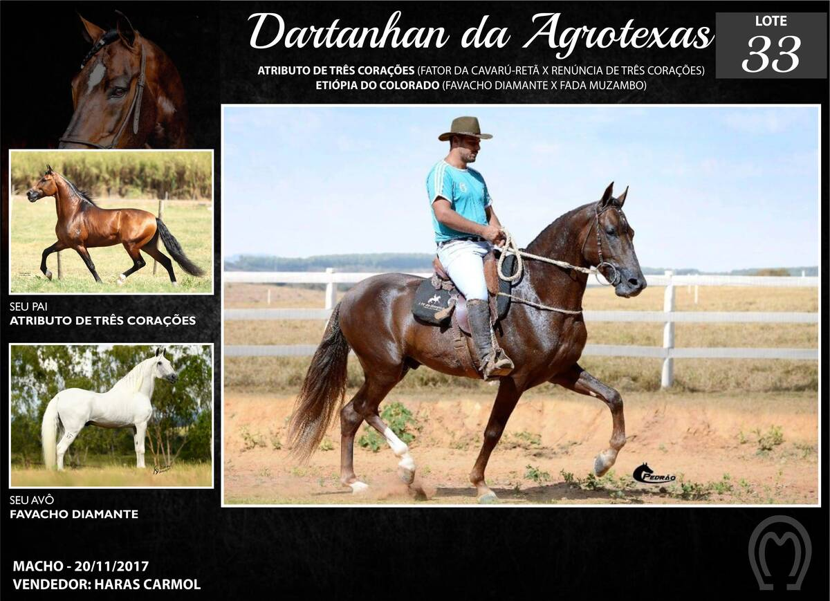 Foto DARTANHAN DA AGROTEXAS