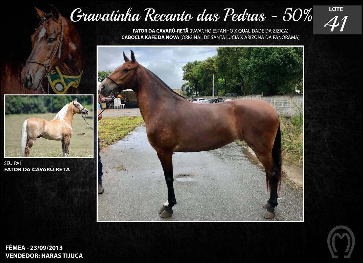 Foto GRAVATINHA RECANTO DAS PEDRAS