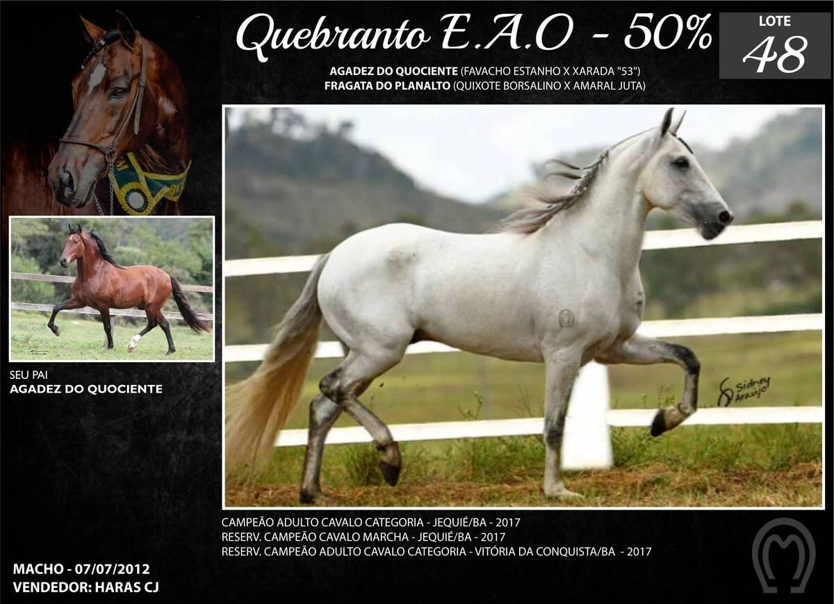 Foto QUEBRANTO E.A.O.